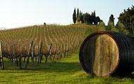 L'Amorosa and the Chianti