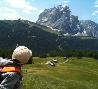 Excursions for the whole family Hotel