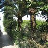 Soleluna Capri