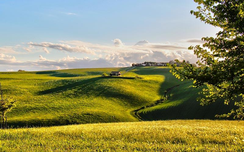 Foto e immagini marche hotels photogallery for Planimetrie della fattoria contemporanea