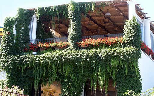 Columbus Restaurantes Anacapri